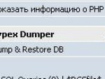Sypex Dumper интеграция.jpg