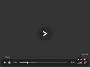 flv-mp3.png